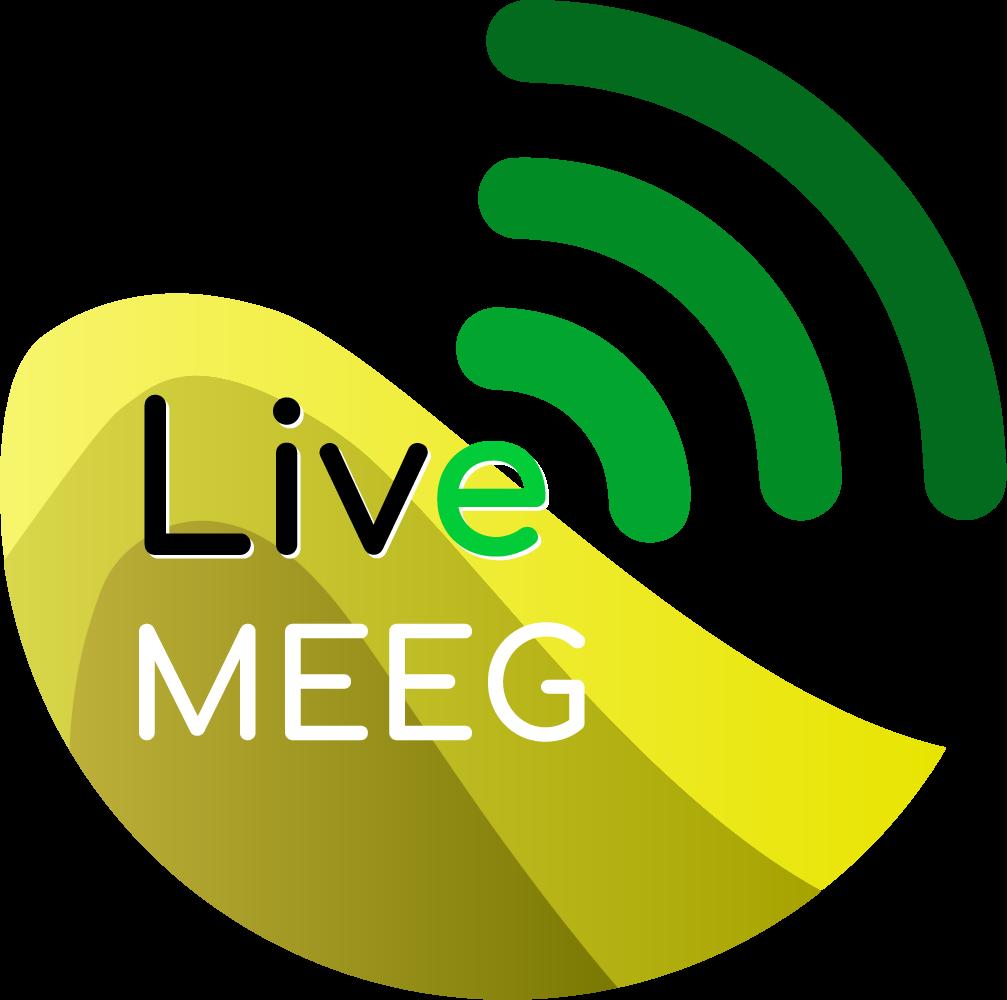 LiveMEEG 2020